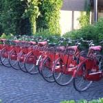 W tych miastach możesz wypożyczyć rower